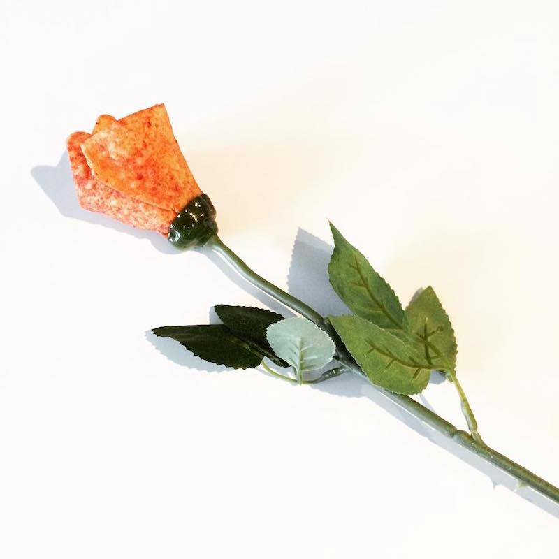free doritos roses