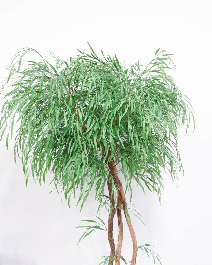Silk Plant Clearance Sale