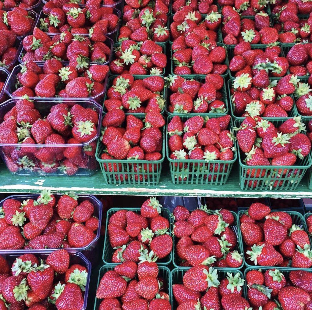 toronto farmers markets