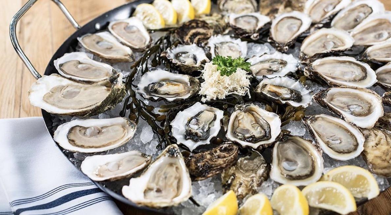 buck a shuck oysters toronto