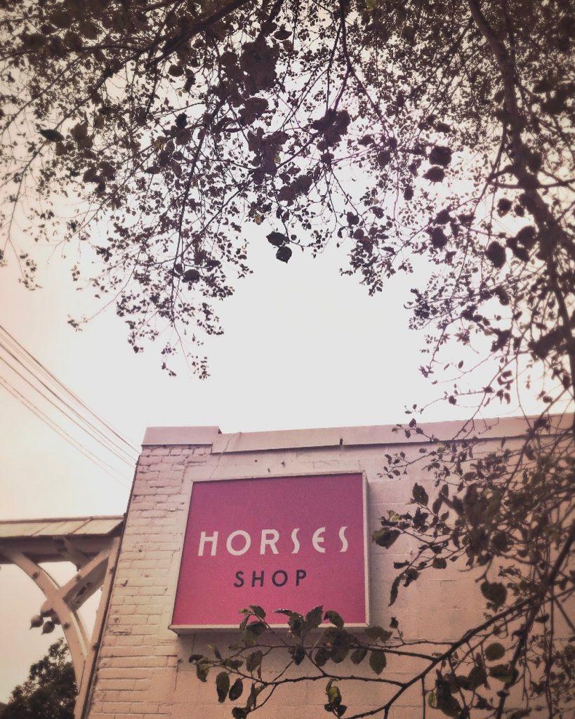 horses atelier toronto